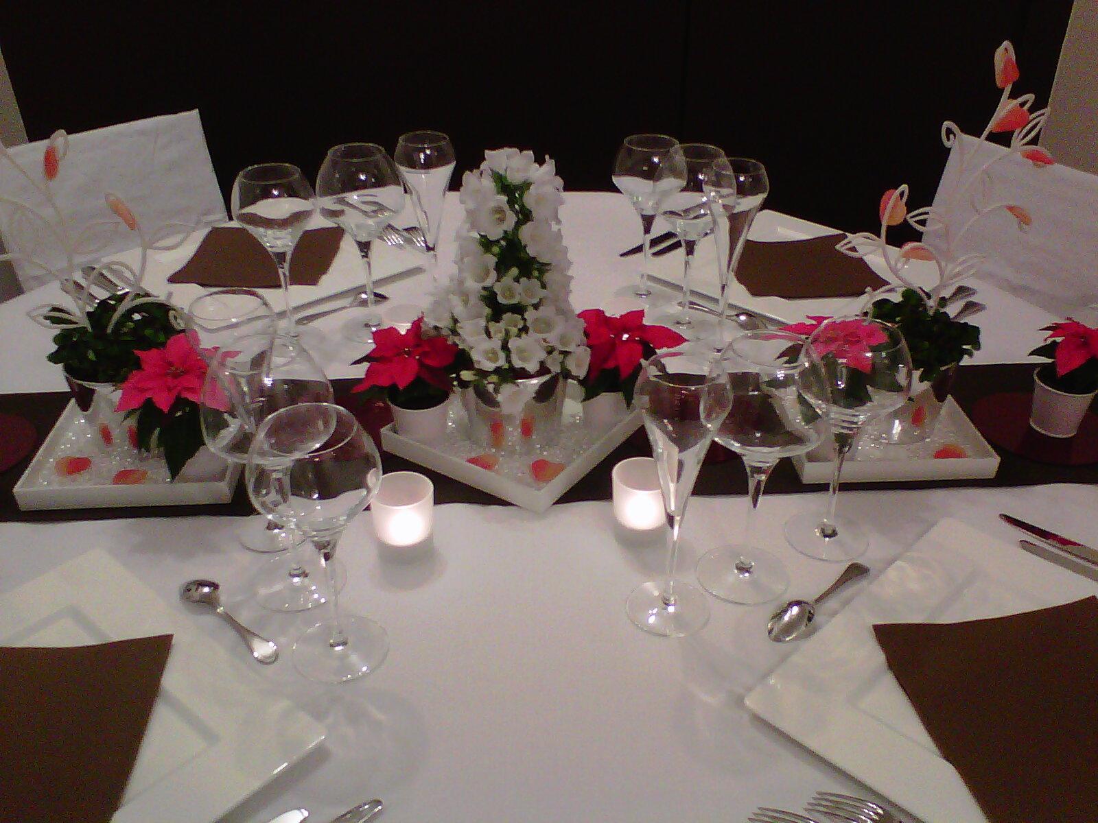 Décoration de table d'hiver. Poinsettias roses et campanules.